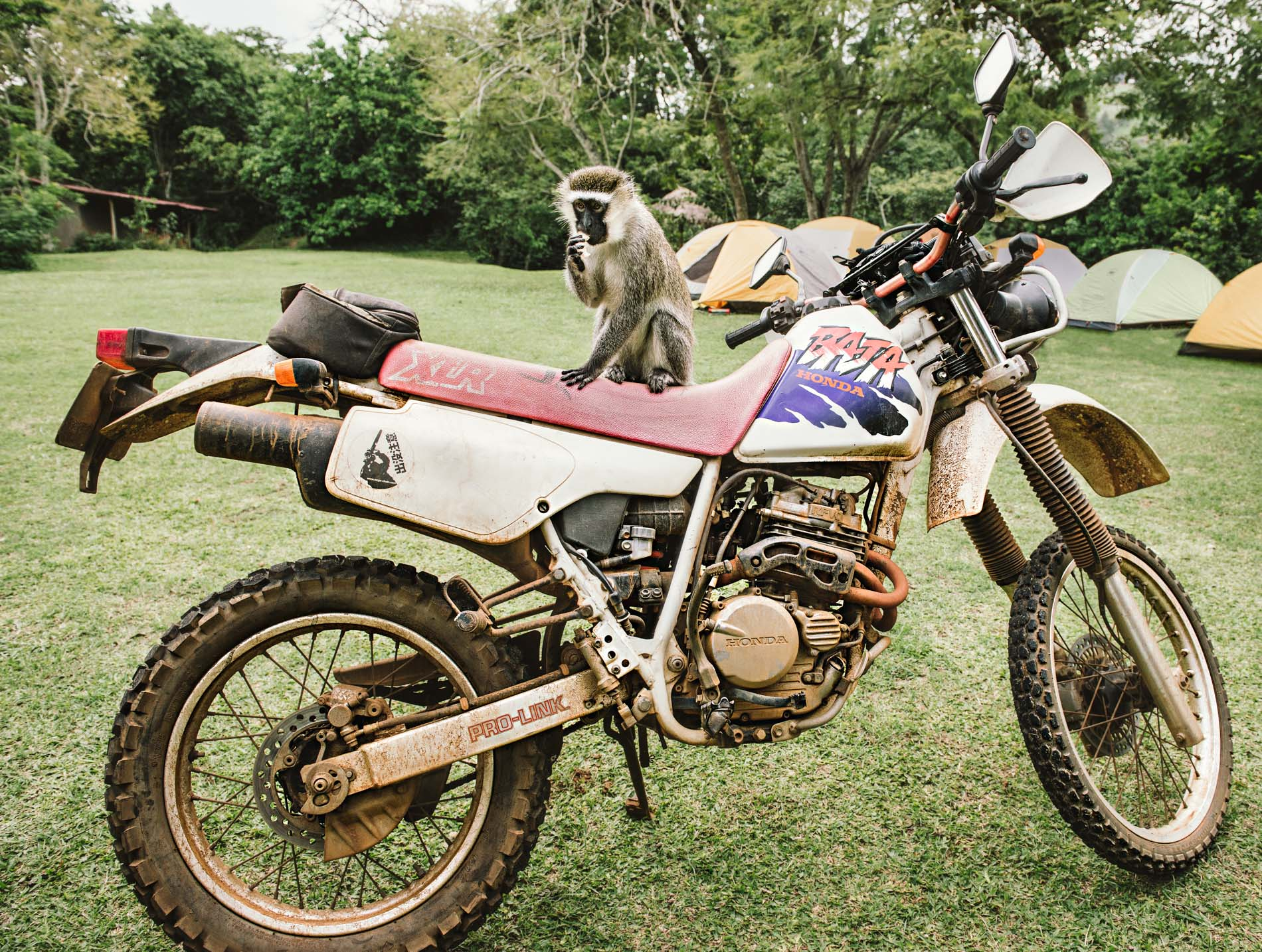 Will Graham Moto-Ganda 2